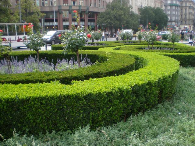 Куряне подали около тысячи предложение по благоустройству города